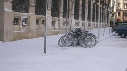 nieve1